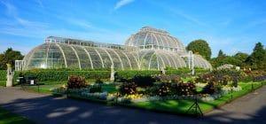 Kew Gardens Chauffeur Tour Services - Garden